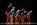 Rencontres Chorégraphiques de la Fédération Française de Danse 2013 5
