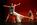 Rencontres Chorégraphiques de la Fédération Française de Danse 2013 17